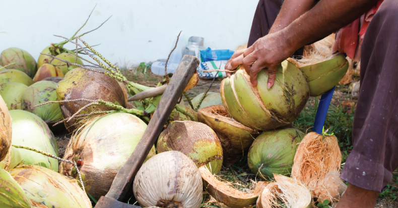 Coco levy trust fund bill hurdles bicam